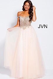 JVN-1